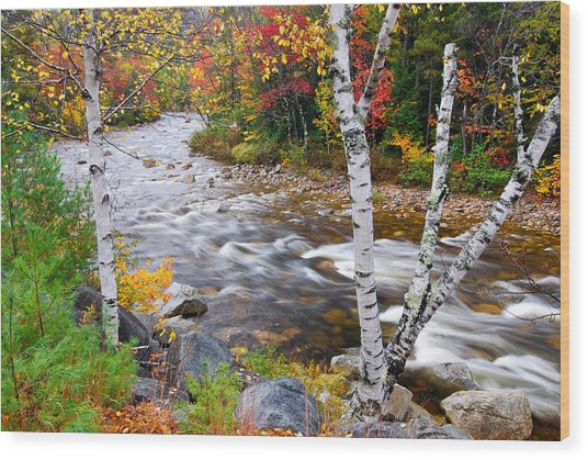 Swift River Wood Print