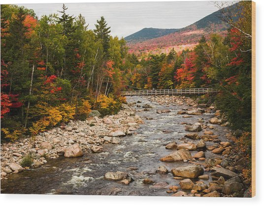 Swift River Painted With Autumns Paint Brush Wood Print