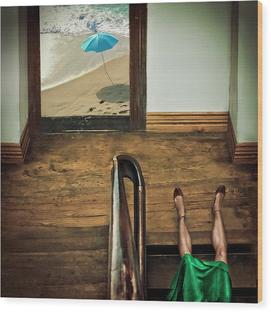 Swim Or Dive! Wood Print by Ambra