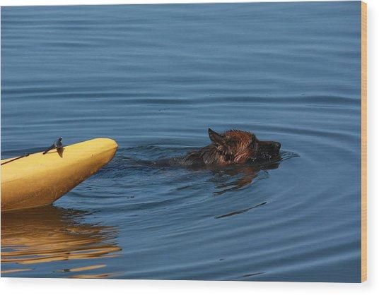 Swimming Anna B Wood Print