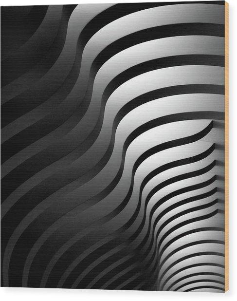 Swinging Lines Wood Print