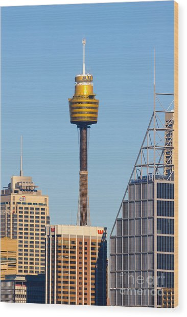 Sydney City Skyline With Sydney Tower Wood Print