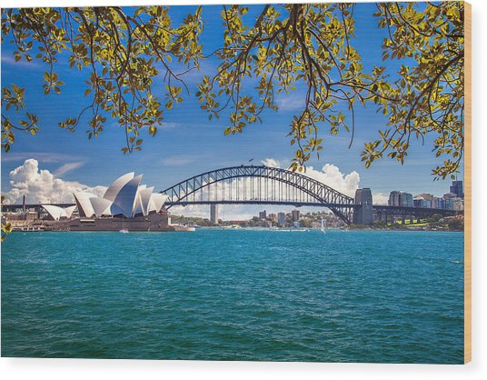 Sydney Harbour Skyline 2 Wood Print