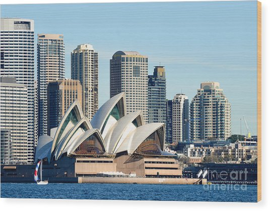 Sydney Opera House And Sydney Harbor - A Classic View Wood Print