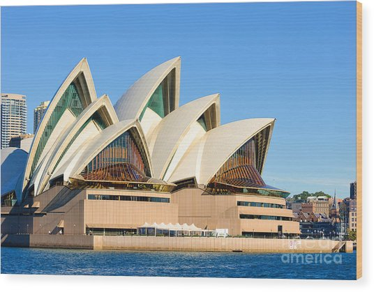 Sydney Opera House And Sydney Harbour Wood Print