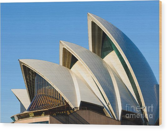 Sydney Opera House Roof Wood Print