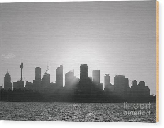 Sydney's Evening B/w Wood Print