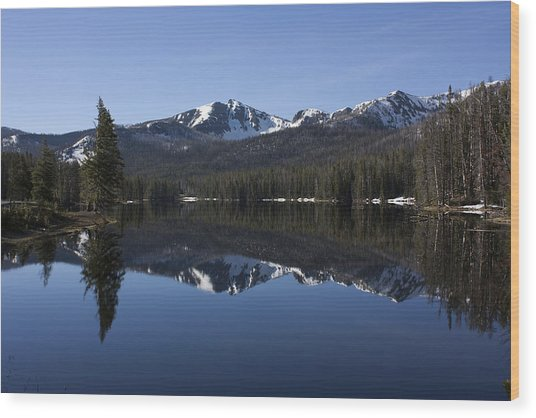 Sylvan Lake Reflection - Yellowstone Wood Print