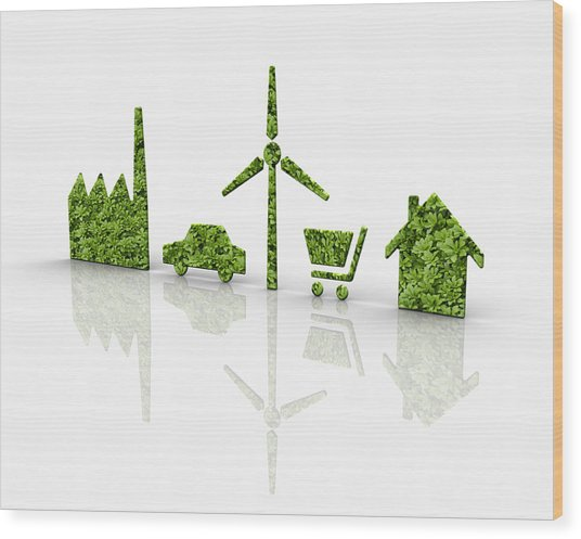 Symbols Of A Sustainable Lifestyle Wood Print by Jorg Greuel