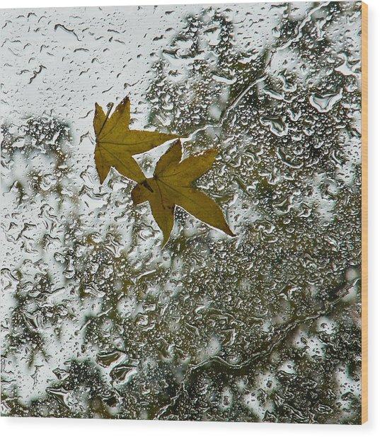Symbols Of Autumn  Wood Print