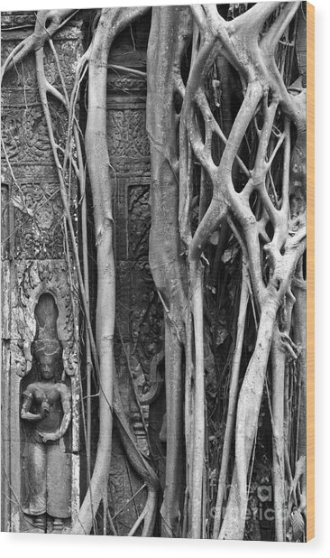 Ta Prohm Roots And Stone 09 Wood Print