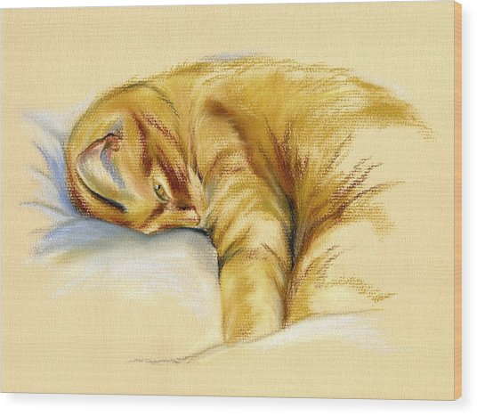 Tabby Cat Relaxed Pose Wood Print