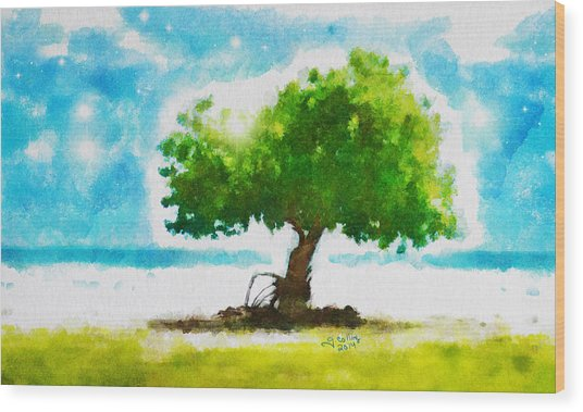Summer Magic Wood Print