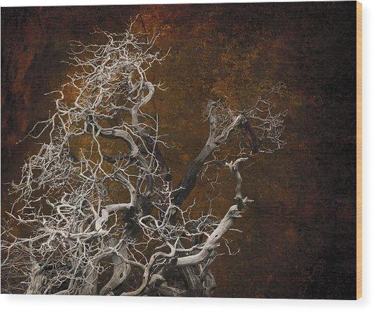Tahoe 3 Wood Print by Jeff Burgess