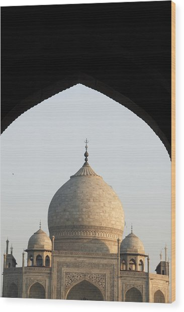 Taj And Arch Wood Print