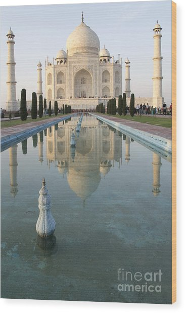 Taj Wood Print