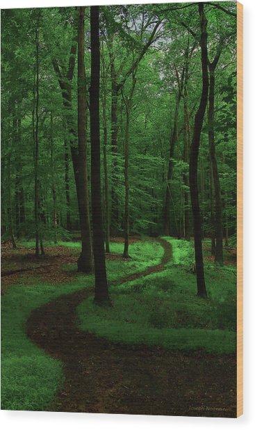 Take A Hike Wood Print