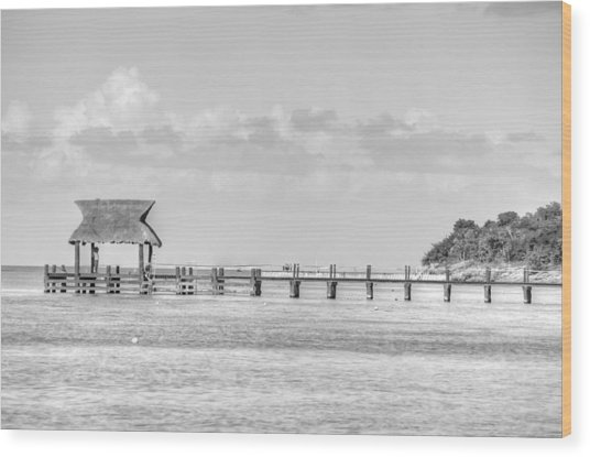 Take A Long Walk Off A Short Pier Wood Print