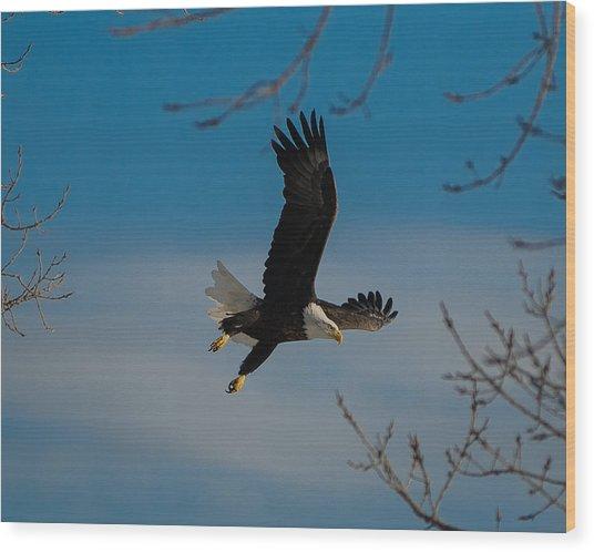 Take Off Wood Print
