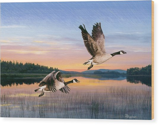 Taking Flight Wood Print by Brent Ander