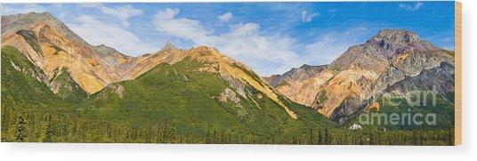 Talkeetna Mountains Wood Print by Chris Heitstuman