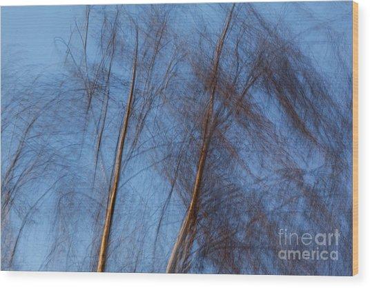 Talking Trees Wood Print