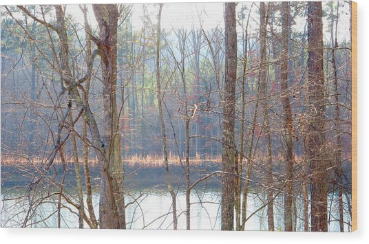 Tallapoosa Wood Print by Keith May