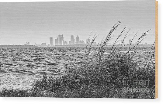 Tampa Across The Bay Wood Print