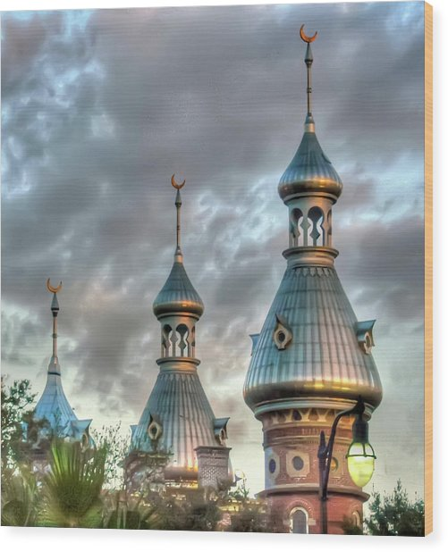 Tampa University Minarets Wood Print
