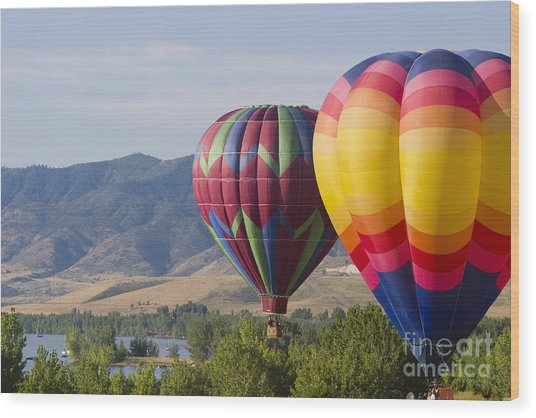 Tandem Balloons Wood Print