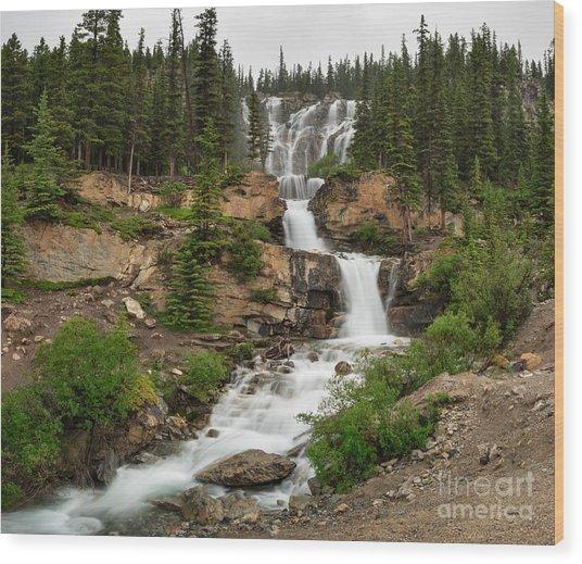 Tangle Falls Wood Print