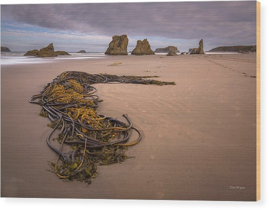 Tangled.... Bandon Oregon Wood Print