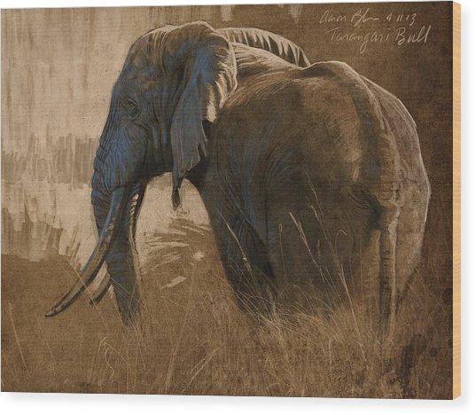 Tarangire Bull Wood Print