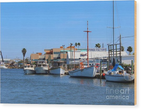 Tarpon Springs Boats Wood Print