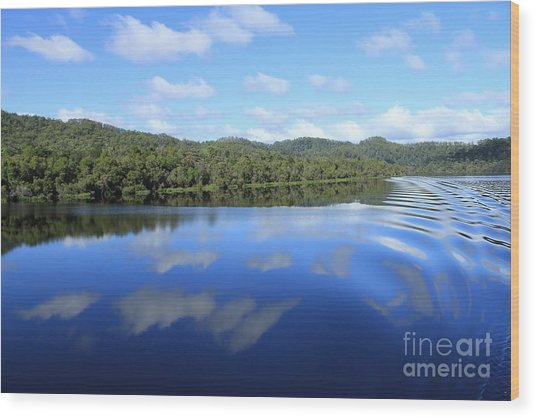 Tasmanian Reflexions All Profits Go To Hospice Of The Calumet Area Wood Print