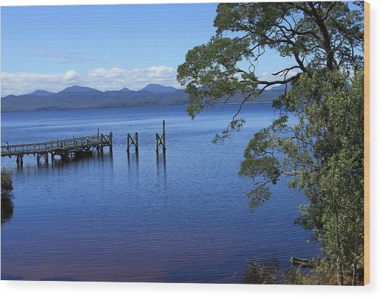 Tasmanian Stillness All Profits Go To Hospice Of The Calumet Area Wood Print