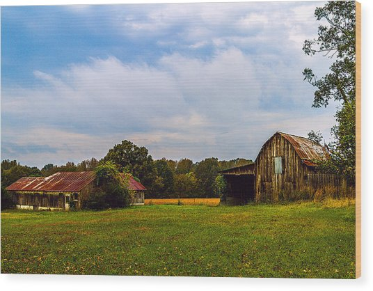 Tate Country Barns - Rural Landscape Wood Print by Barry Jones