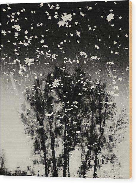 tathata #12NULLUS2 Wood Print by Alex Zhul