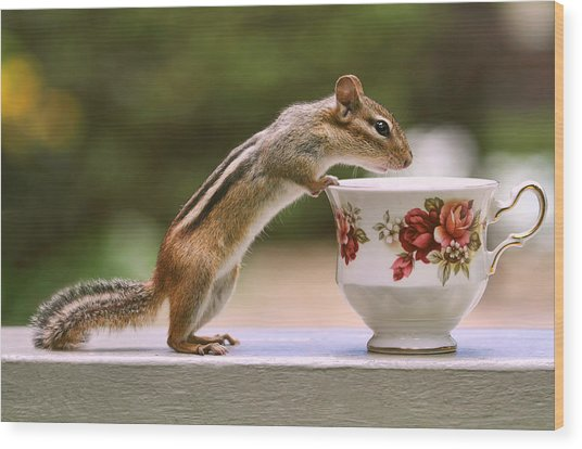 Tea Time With Chipmunk Wood Print