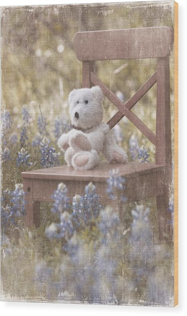 Teddy Bear And Texas Bluebonnets Wood Print
