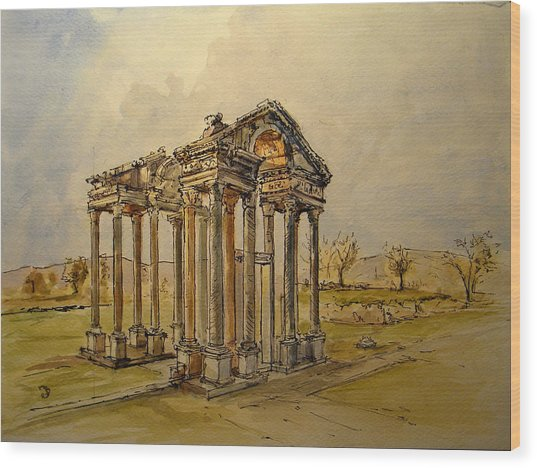 Temple Of Aphrodite Wood Print