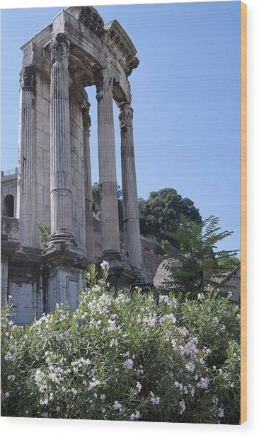 Temple Of Vesta Wood Print