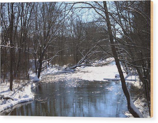 Ten Mile River Wood Print by Barbara Giordano