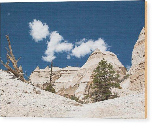High Noon At Tent Rocks Wood Print