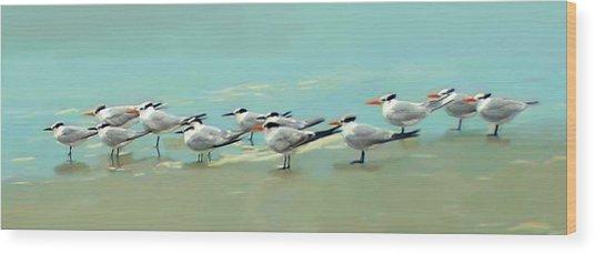 Tern Tern Tern Wood Print