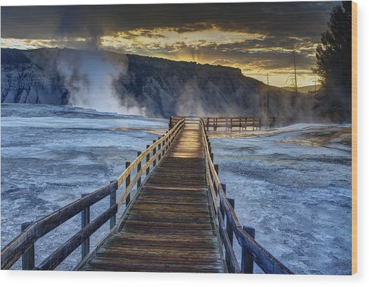 Terrace Boardwalk Wood Print