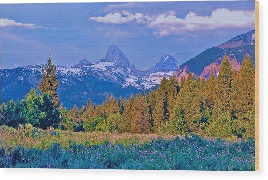 Teton Backside Wildflowers Wood Print by Larry Bodinson