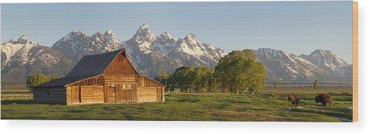 Teton Barn With Bison Wood Print