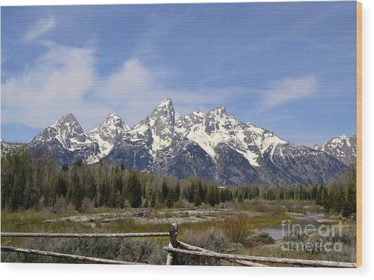 Teton Majesty Wood Print