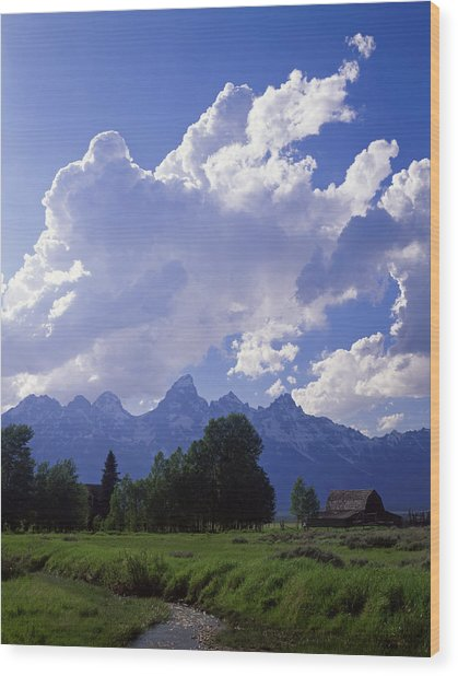 Teton Ranch Afternoon Wood Print by Mike Norton